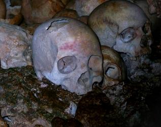 Human Skulls, PNG