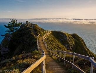 Stairway Lookout San Francisco