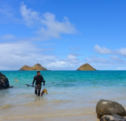 spearfisher, Lanikai - feeding a family of five, Oah'u