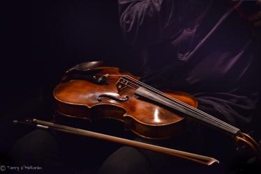 Violin on his lap